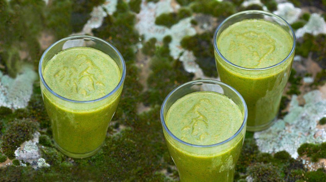Fresh Green Smoothie 3 Gläser Maike Helbig /www.myotherstories.de