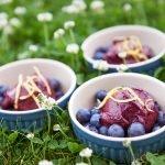 Blaubeer-Frozen-yoghurt Fotos Maike Helbig / www.myotherstories.de