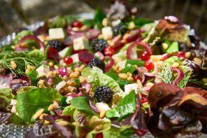 Ernte im Gemüsebeet – Eichblattsalat mit Rote Bete, Beeren und Schafskäse