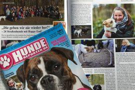 Hundereporter.de - Gluecksfellchen / myotherstories.de