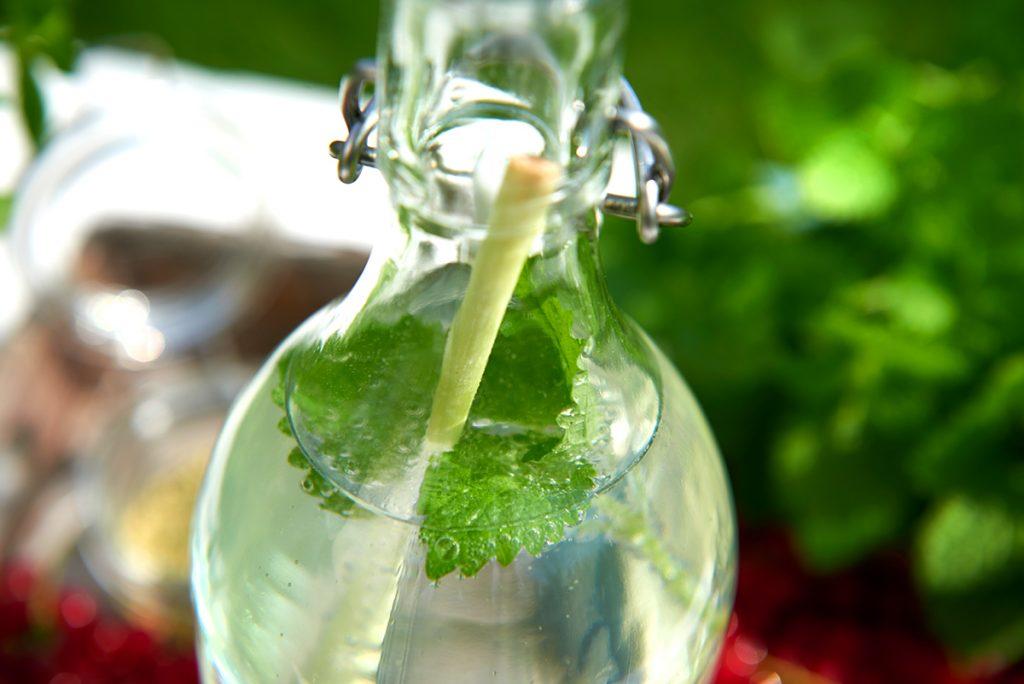 Wasserflasche-mit-Zitronengras-fuer-Selbstgemachte Limonade in drei köstlichen Geschmacksrichtungen-Foto: Maike Helbig-fuer-Bettina-Bergwelt-www.myotherstories.de