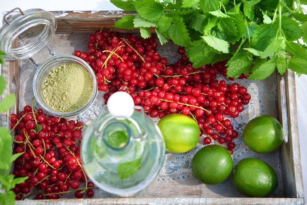 Zutaten-fuer-Selbstgemachte Limonade in drei köstlichen Geschmacksrichtungen-Foto: Maike Helbig-fuer-Bettina-Bergwelt-www.myotherstories.de