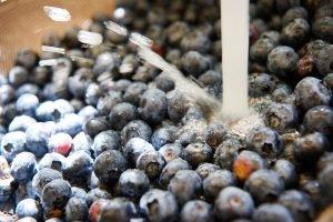 blaubeeren-fuer-blueberry-cheesecake-mit-viel-vanille-foto-maike-helbig-fuer-www.myotherstories.de