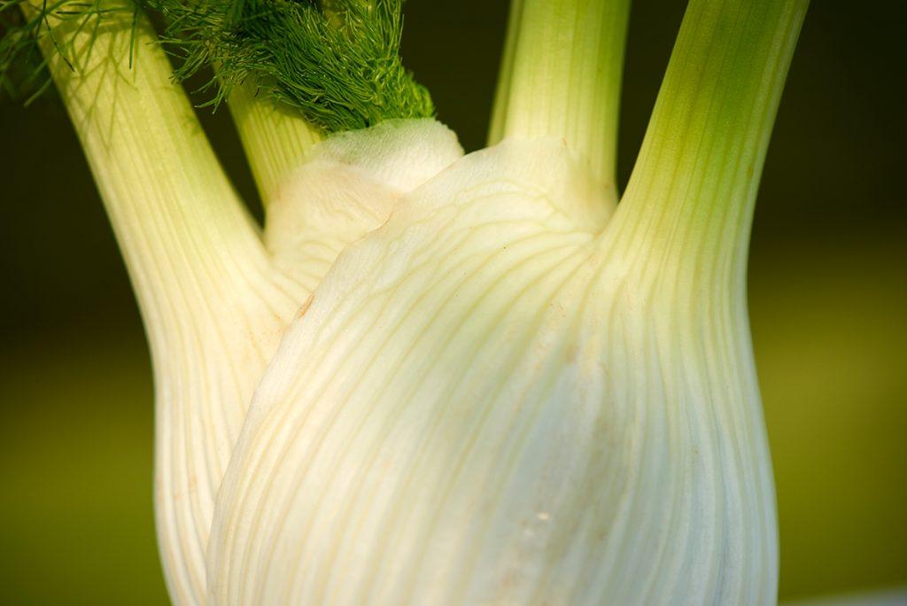 fenchel-fuer-gebratenes-knoblauchgemuese-in-weisswein-mit-backkartoffeln-und-zitrus-butter-foto-maike-helbig-fuer-www.myotherstories.de