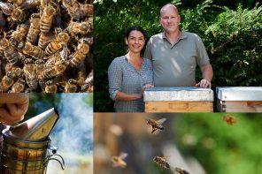Der Schwarm des Imkers – von Bienen, Honig und Eierlikör