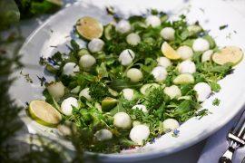 salat-mit-zuckermelone-mozzarella-und-limetten-dressing-auf-teller-foto-maike-helbig.www.myotherstories.de