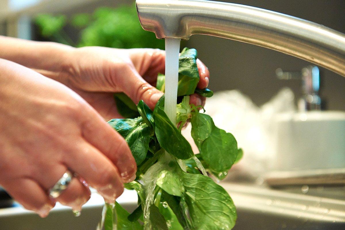 salat-waschen-für Salat-mit-zuckermelone-mozzarella-und-limetten-dressing-foto-maike-helbig.www.myotherstories.de