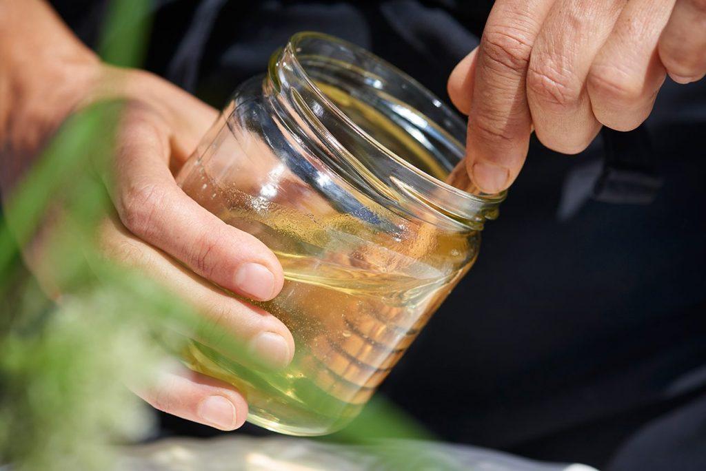 honig-im-glas-fuer-zucchini-kuchen-vom-bio-imker-honigsuess-und-super-saftig-foto-maike-helbig-fuer-www.myotherstories.de